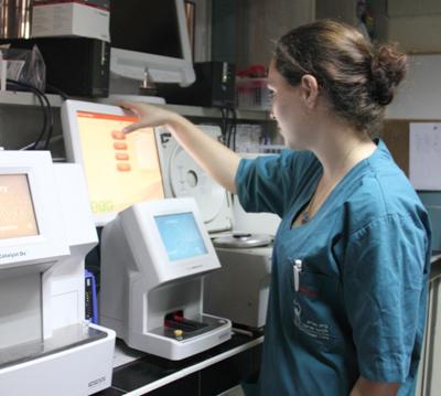 בדיקות מעבדה וטרינרים - שדמה