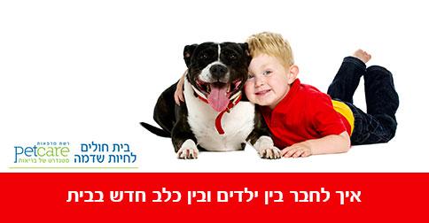 חיבור בין כלב חדש לילדים בבית